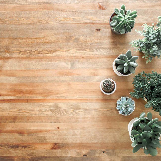 Vorlegeservice, Holzboden, Dielen